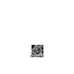 G-Carper